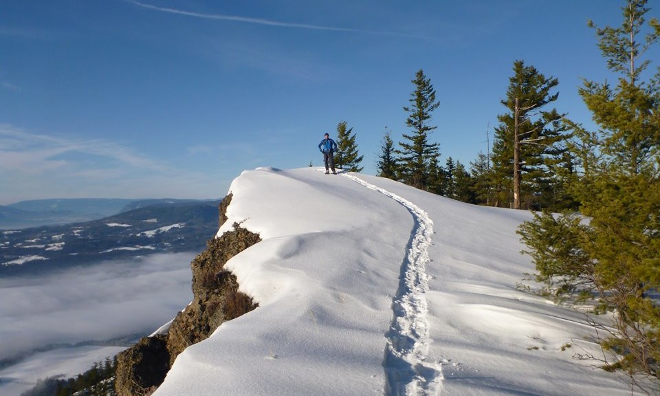 Tracks in Winter Snow at Enderby Cliffs. Adventure is always 10 minutes away.