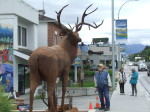 Enderby resident checks out the new deer sculpture